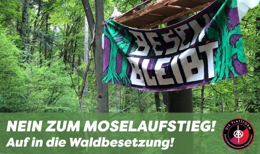 Nein zum Moselaufstieg! Auf in die Waldbesetzung!
